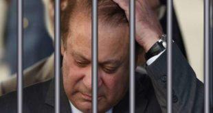 Nawaz Sharif bail
