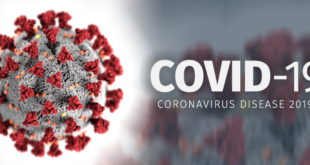 Theories about coronavirus